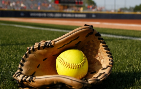 2018 softball team: athletic and versatile