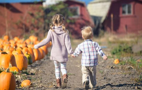 Family-friendly things to do in October