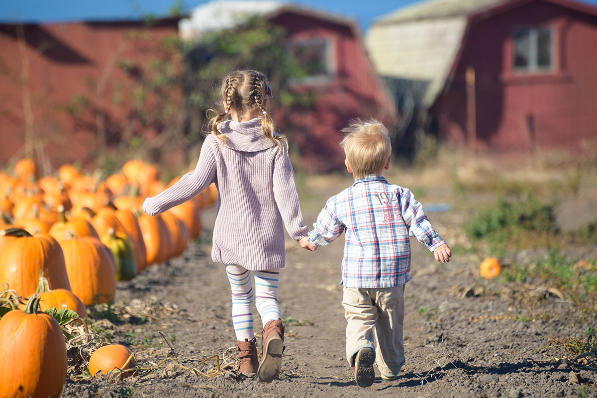 https://www.northernvirginiamag.com/family/family-features/2019/09/23/4-family-friendly-events-coming-to-nova-parks-in-october/